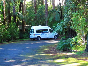"""Backpacker"" hitop van, West Taranaki, 2010"