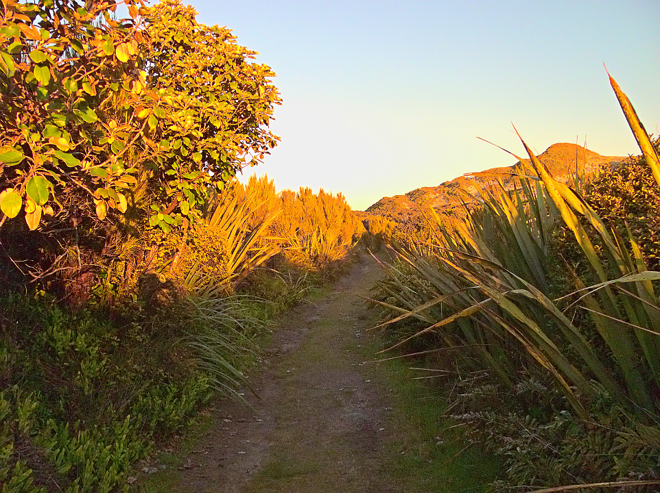 Sunset Path from Mason Bay