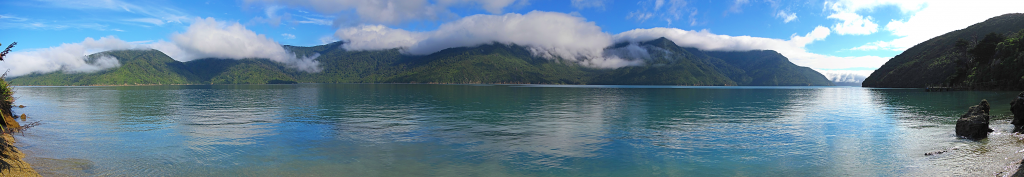 View from Motuara Island, handheld panorama