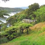 Lochmara View
